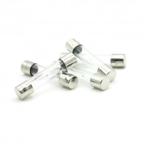 5x lot Fusibles verre 6x30mm fusion lente - temporisé - T1A - 250v