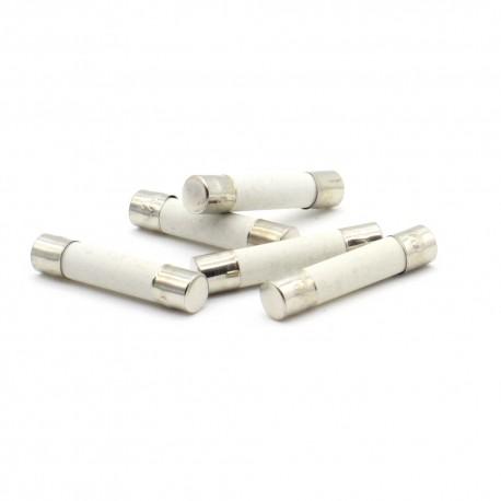 5x lot Fusibles céramique 6x30mm fusion rapide - 6.3A F6.3A - 250v